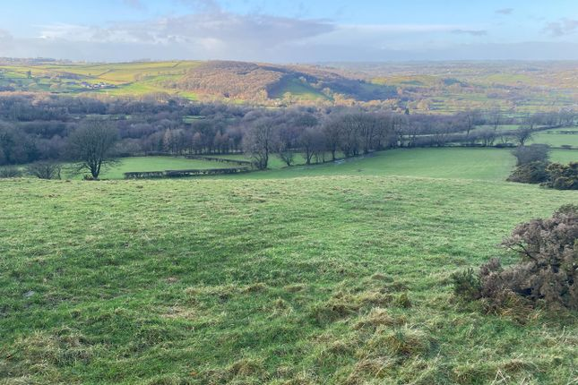 Thumbnail Land for sale in Parc Y Rhos, Cwmann, Lampeter