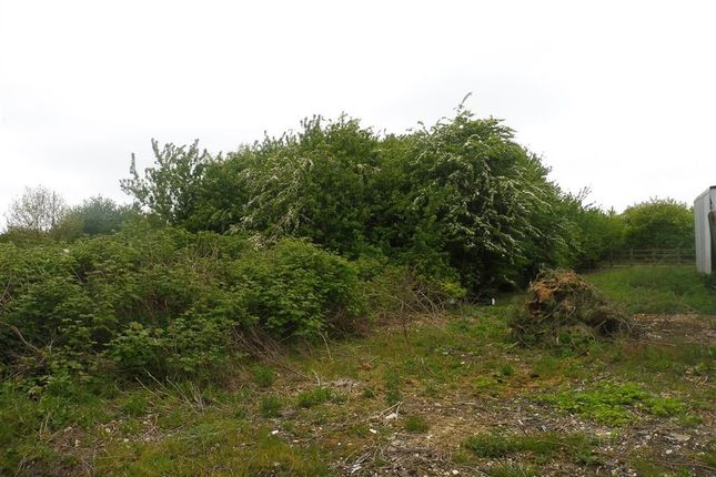 Thumbnail Land for sale in Alexandra Road, Rushden