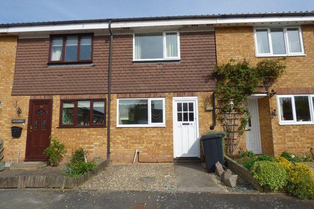 Thumbnail Property to rent in Cheltenham Avenue, Bobblestock