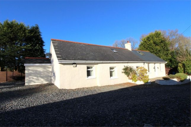 Thumbnail Cottage for sale in Temple Bar, Felinfach, Lampeter