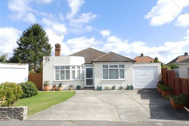 Thumbnail Detached bungalow for sale in Clare Road, Ipswich, Suffolk