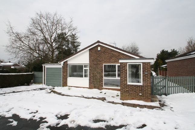 Thumbnail Bungalow to rent in Kelsborrow Way, Kelsall