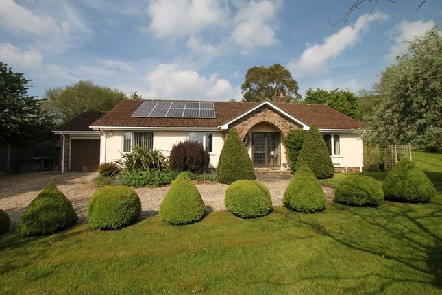 Thumbnail Bungalow for sale in Winpenny Lane, Kingston St. Mary, Taunton, Somerset