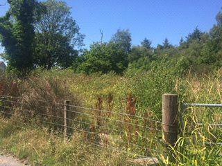 Thumbnail Land for sale in Plot 4, Gilgarran Park, Gilgarran, Workington