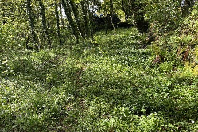 Land for sale in The Grove, Cilgwyn Road, Newport SA42