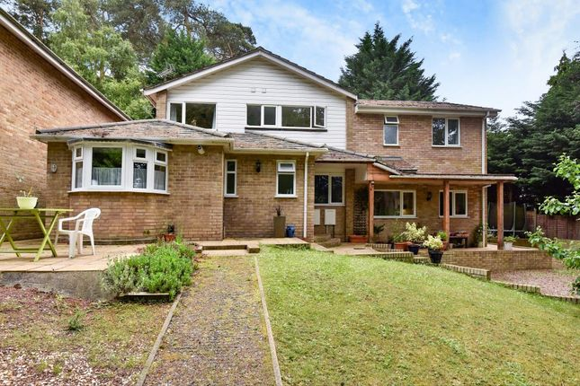 Thumbnail Detached house to rent in Carlton Close, Camberley