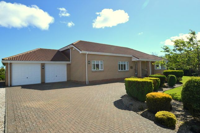 Thumbnail Detached bungalow for sale in Meadow Grange, Berwick-Upon-Tweed