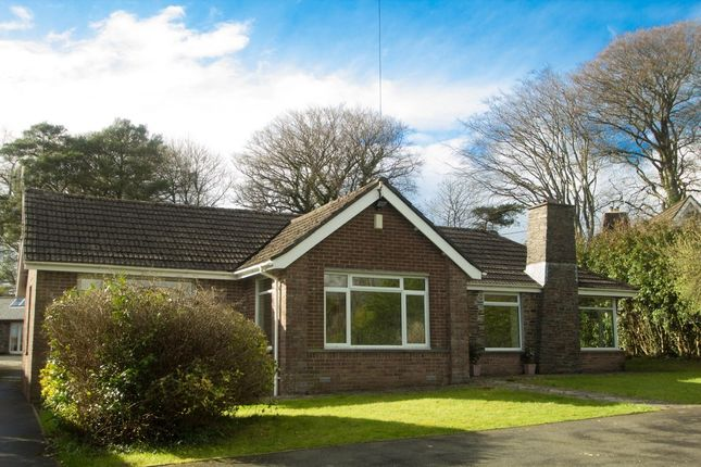 Thumbnail Detached bungalow for sale in Meavy Bourne, Yelverton