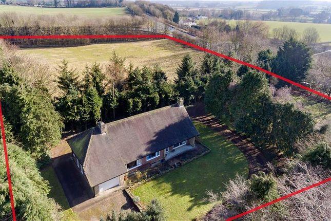 Thumbnail Detached bungalow for sale in Station Road, Piercebridge, County Durham