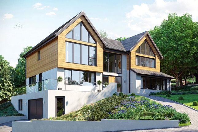 Thumbnail Detached house for sale in Park Lane, Exeter, Devon