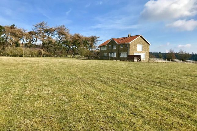 Thumbnail Farmhouse for sale in Wass, North Yorkshire