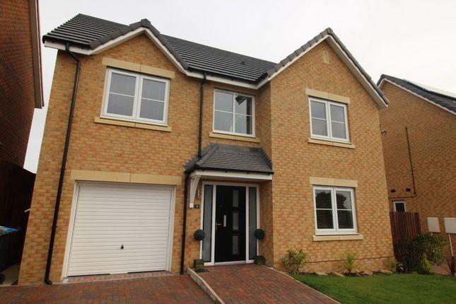 Thumbnail Detached house for sale in Oak Crescent, Chilton, Ferryhill
