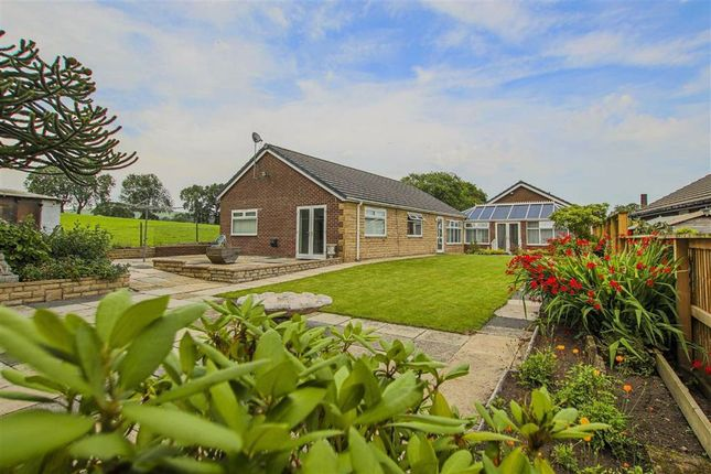 Thumbnail Detached bungalow for sale in Bankfold, Barrowford, Lancashire