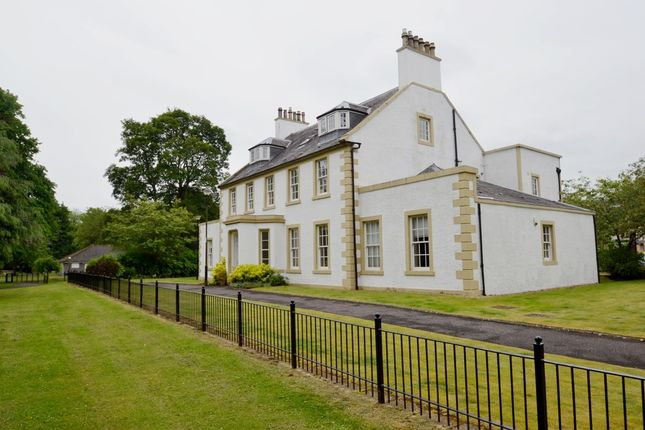Thumbnail Flat to rent in Beechwood Gardens, Stirling