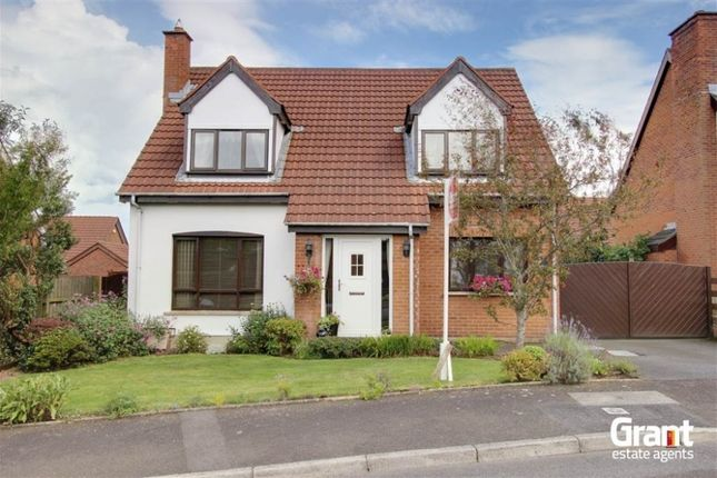 Thumbnail Detached house for sale in Ashbury Avenue, Bangor