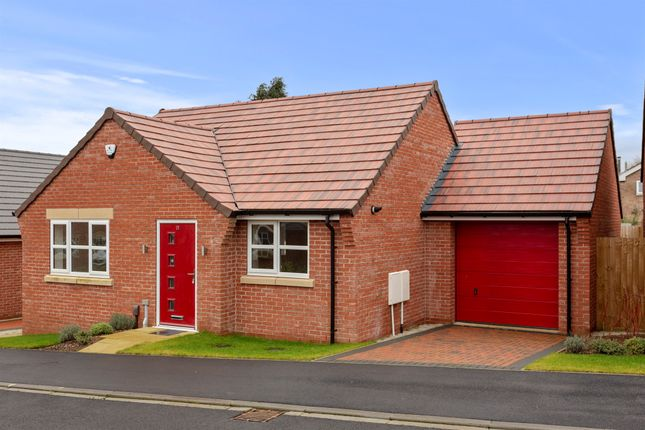 Thumbnail Detached bungalow for sale in Brandyline Gardens, Newthorpe, Nottingham