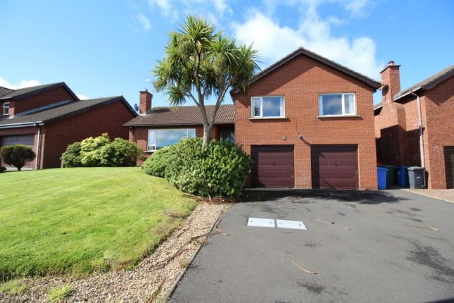 Thumbnail Detached house for sale in Beechfield Avenue, Bangor