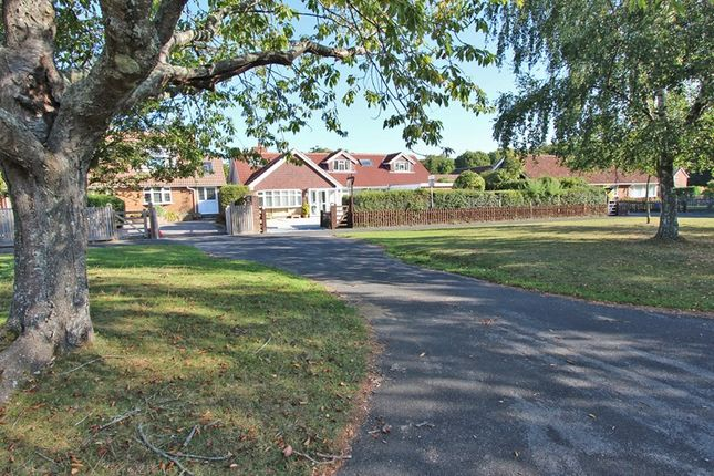 Thumbnail Bungalow for sale in Whitemoor Road, Brockenhurst, Hampshire