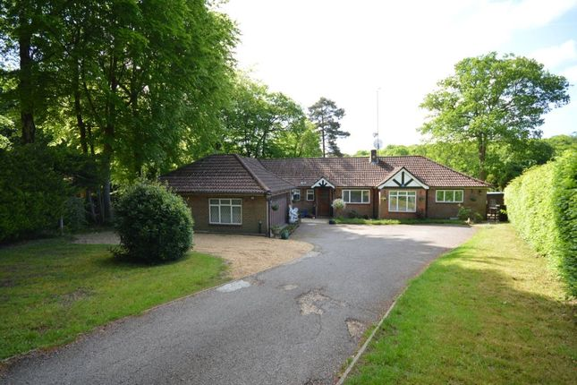 Thumbnail Bungalow for sale in St. Johns Road, Hazlemere, High Wycombe