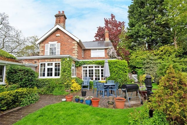 Thumbnail Detached house for sale in Grove Lane, Waltham, Grimsby, Lincolnshire