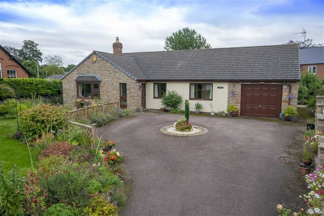 Thumbnail Detached bungalow for sale in Llanymynech