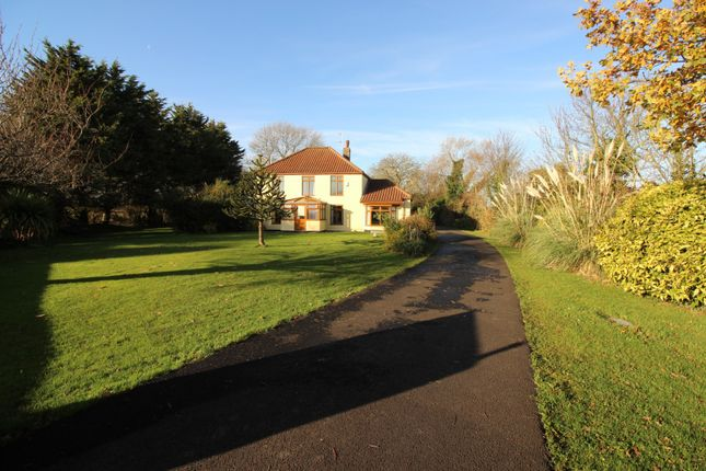Thumbnail Property for sale in Acle Bridge, Norwich