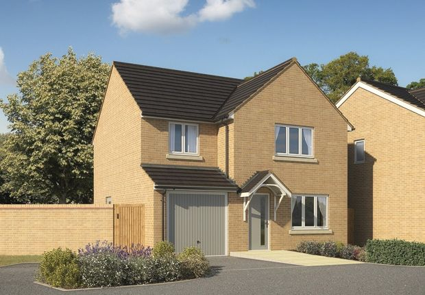 "Thumbnail Detached house for sale in ""The Roseberry "" at Bishops Hull Road, Bishops Hull, Taunton"