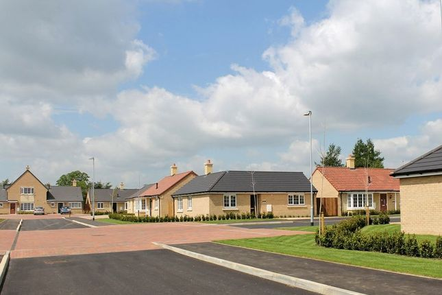 Thumbnail Bungalow for sale in The Browning, Chesham Drive, Baston, Peterborough