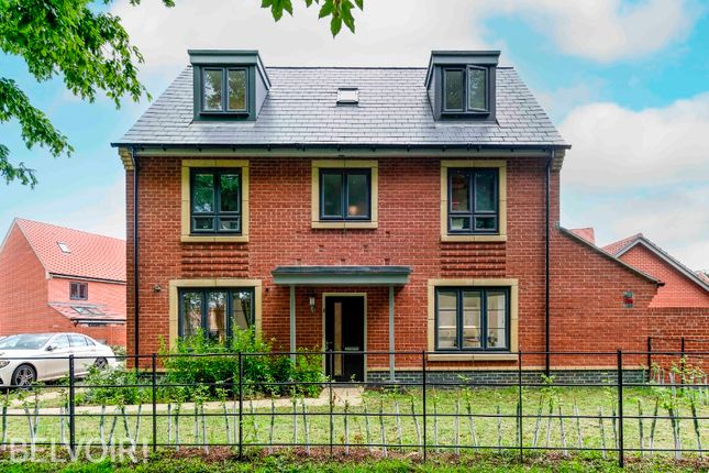 Thumbnail Detached house for sale in Echelon Walk, Colchester
