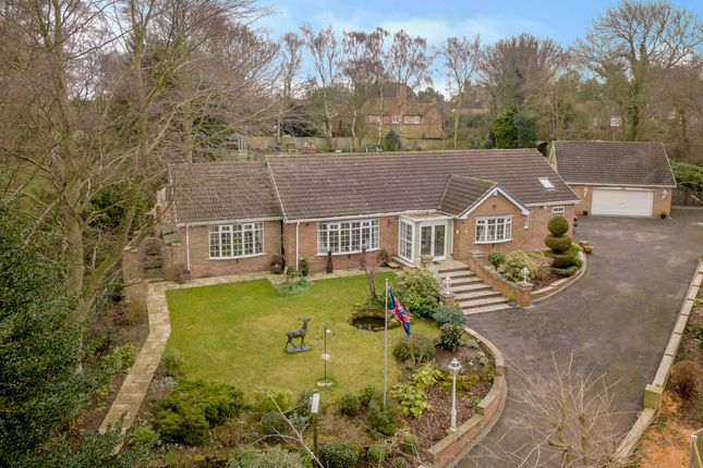Thumbnail Detached bungalow for sale in Tranby, Rectory Lane, Gamston