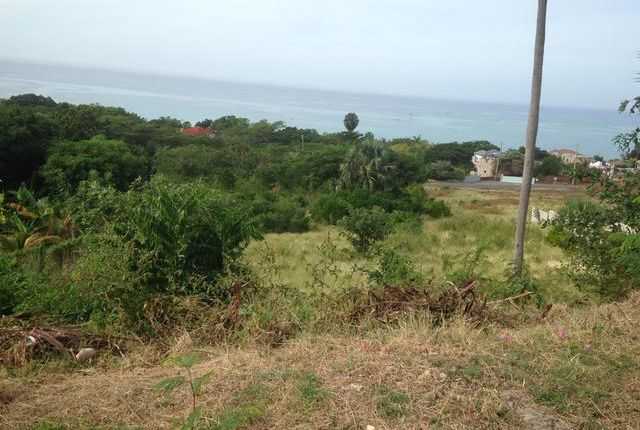 Land for sale in Savanna-La-Mar, Westmoreland, Jamaica