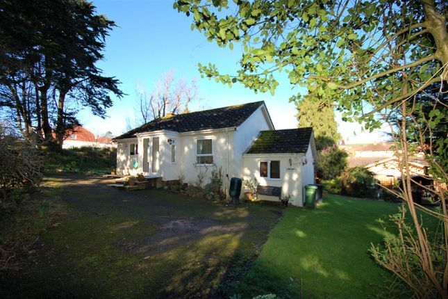 Thumbnail Detached bungalow to rent in Marlpit Lane, Seaton