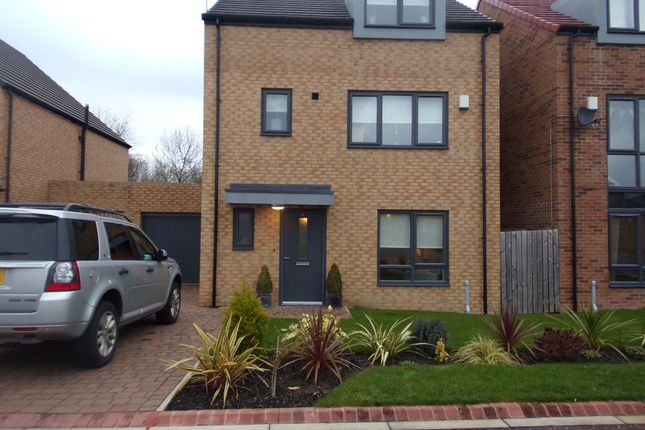 Thumbnail Detached house for sale in Cranbrook, Annitsford, Cramlington
