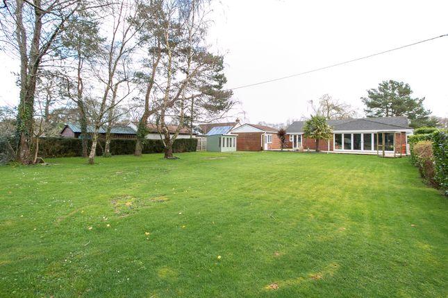 Thumbnail Detached bungalow for sale in Verwood Road, Woodlands, Wimborne