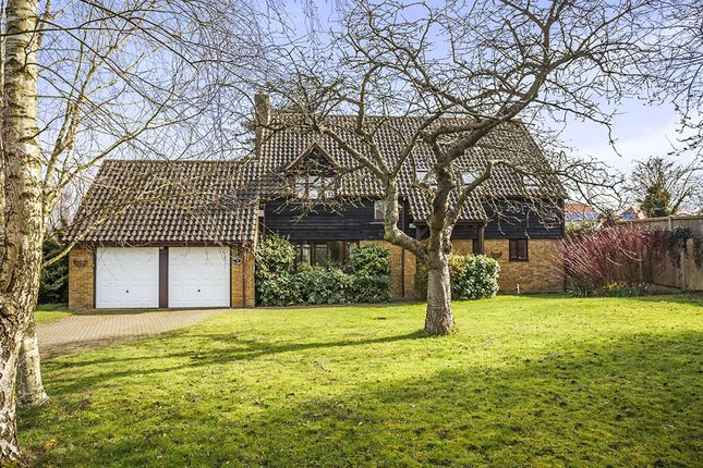 Thumbnail Detached house for sale in The Warren, Selling, Faversham