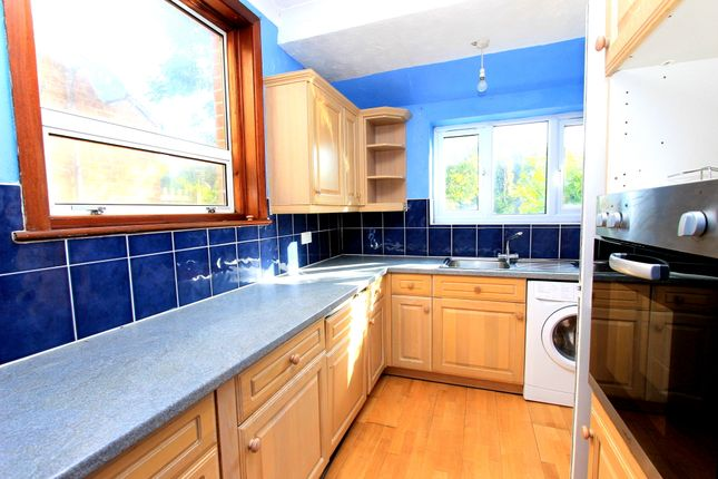 Thumbnail Semi-detached house to rent in Rushlake Road, Brighton