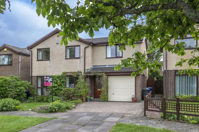 Thumbnail Property for sale in Pilgrims Way, Newminster Park, Morpeth
