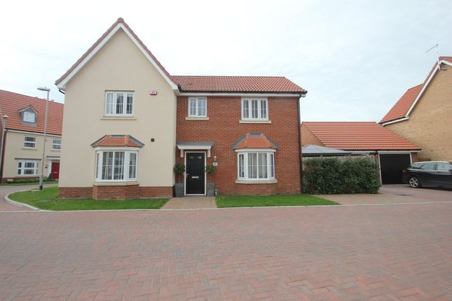 Thumbnail Detached house for sale in Shetland Crescent, Rochford