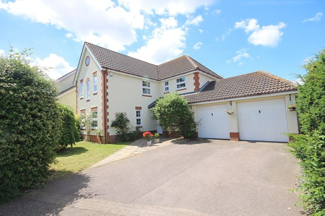 Thumbnail Detached house for sale in Linfold Close, Braintree
