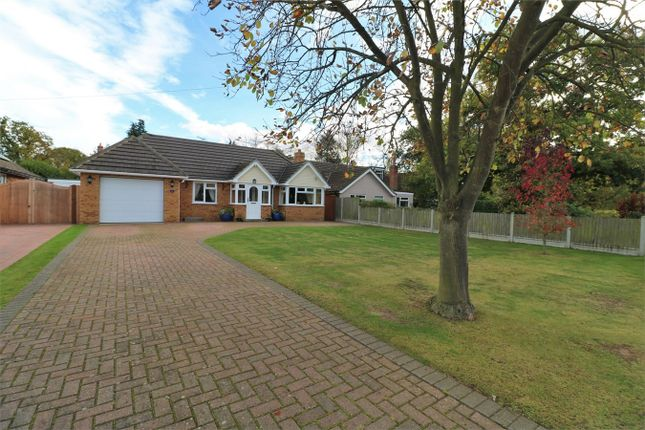 Thumbnail Detached bungalow for sale in Woodland Way, Wivenhoe, Colchester