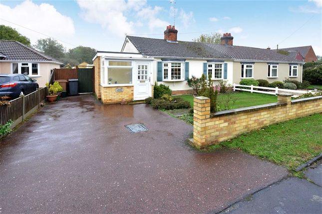 Thumbnail Semi-detached bungalow for sale in Roman Road, Little Waltham, Essex