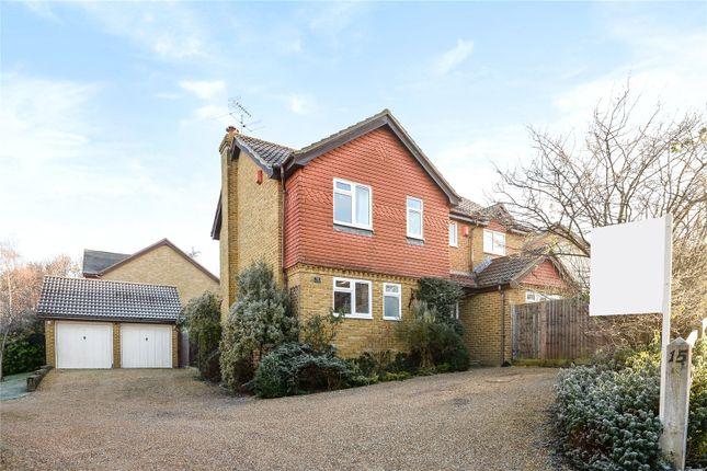 Thumbnail Detached house for sale in Wiltshire Grove, Warfield, Berkshire