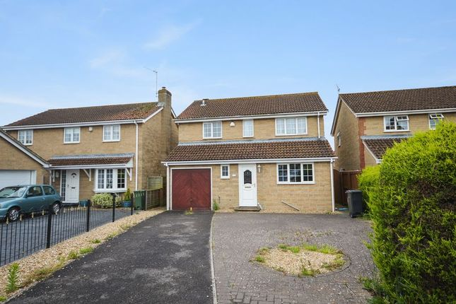 Thumbnail Detached house to rent in Old Market, Martock