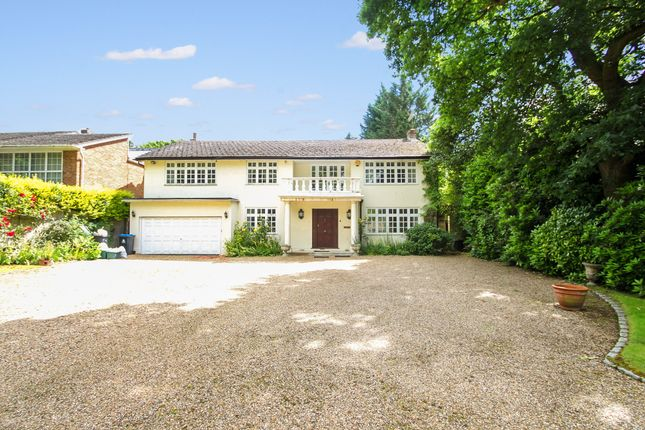 Thumbnail Detached house to rent in Warren Road, Kingston Upon Thames, Surrey
