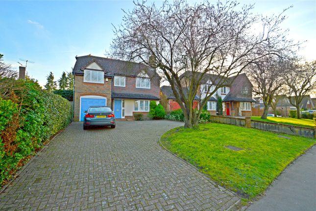 Thumbnail Detached house for sale in Selborne Road, Croydon