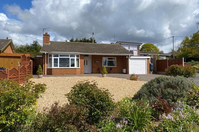 Thumbnail Bungalow for sale in Tillington Road, Hereford