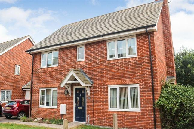 Thumbnail Detached house for sale in Faulkner Gardens, Wick, Littlehampton, West Sussex