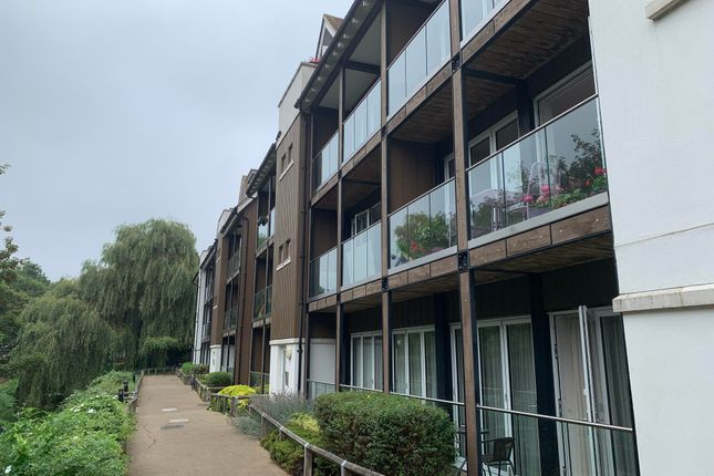 Thumbnail Property to rent in The Rope Walk, Canterbury