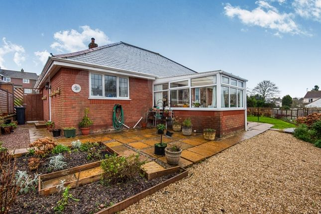Thumbnail Detached bungalow for sale in Woodbury Lane, Axminster