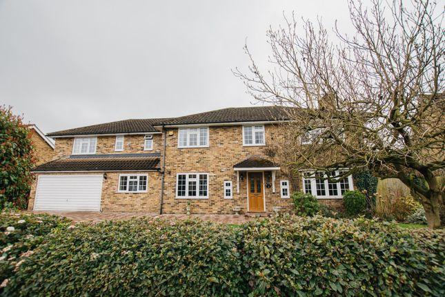 Thumbnail Detached house for sale in The Heythrop, Chelmsford